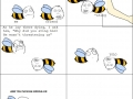 Bees YOLO