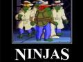 Ninjaguise
