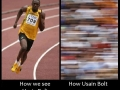 Usain Bolt is fast!