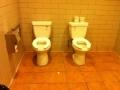 Bathroom in Starbucks