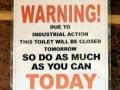 Industrial Toilet Action