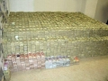The Bed of a Drug Lord