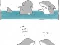 OMG Shark!!!