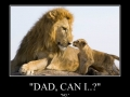 'Dad, can I?'