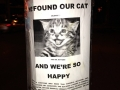 We found our cat!