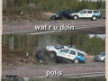 Polis, stahp!