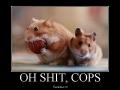 Oh sh*t, cops!