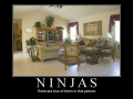 Ninjas, Can You See Them?
