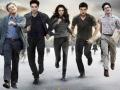 Twilight got a new casting!