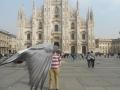 Photobomb lvl: Pigeon