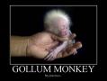 Gollum Monkey
