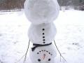 Go home Snowman..