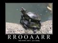 Roooaaarrr!