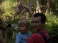 Photobomb lvl: Giraffe