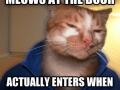 Good Guy Cat