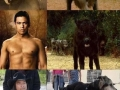 Werewolf Transformations