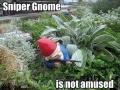 Sniper Gnome
