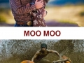 MOO MOO!