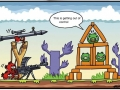 Angry Birds lately