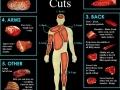 Human Choice Cuts