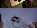 3D Optical Illusions