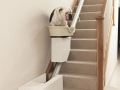 Stair Lift for Dogs