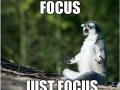 Focus.. just focus...