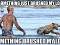 Every time at the beach