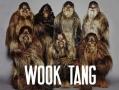 Wook Tang Clan