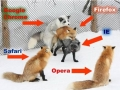 Web Browsers Explained