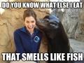Secret Seal
