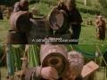 I'm a Hobbit!