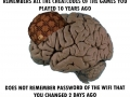 Oh c'mon on now brain!