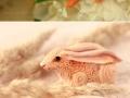 Handmade animal art