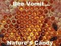 Mmm, taste bee vomit