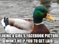 Advice Mallard on FB
