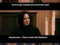 Dumbledore & house points