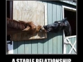 A stable relationship