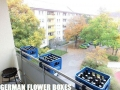 German Flower Boxes