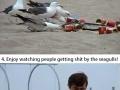 Gotta love this prank!