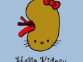 Hello Kidney!
