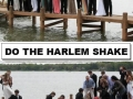 Doing the Harlem Shake