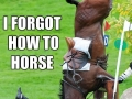 Forgetful horse