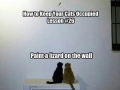 Keep your cats occupied