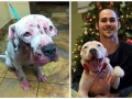Before & after rescue