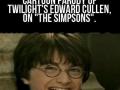 Harry Potter Troll