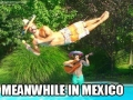 Best mexican picture