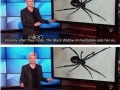 Rather date a black widow