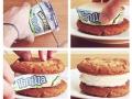Delicious ice cream biscuit
