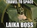 Laika boss